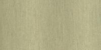 SILKSHEEN CELERY 136-77